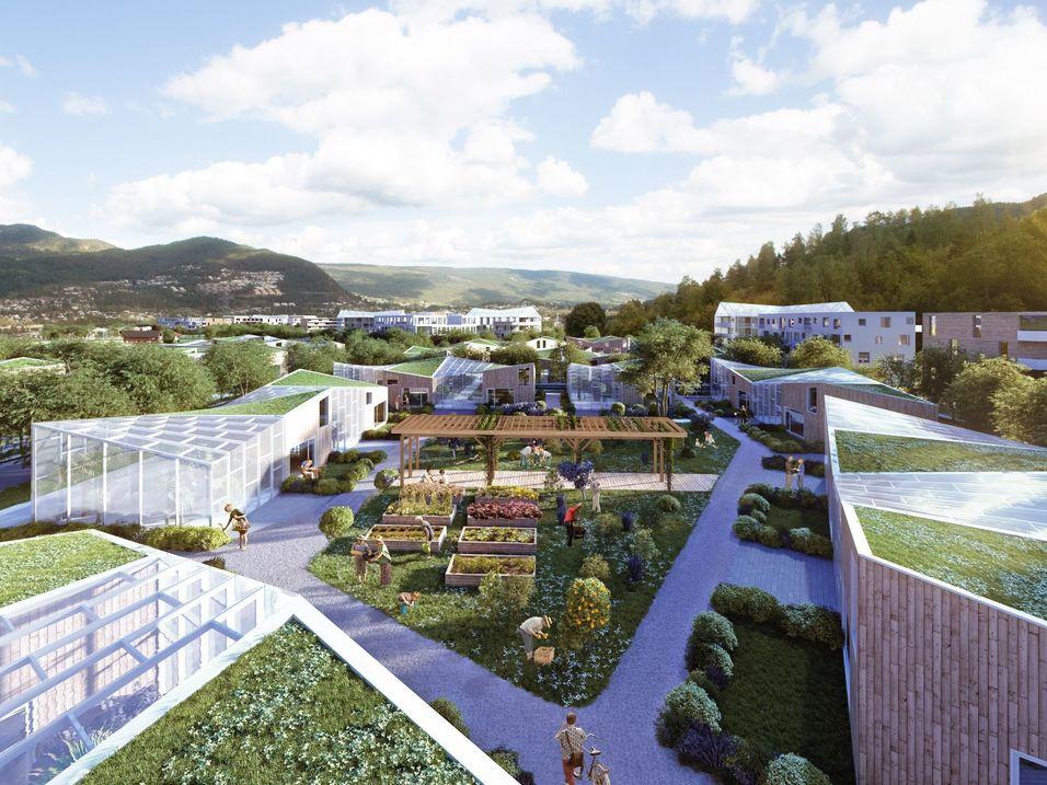 Politisk endringsvilje må til for mer bærekraftig byutvikling
