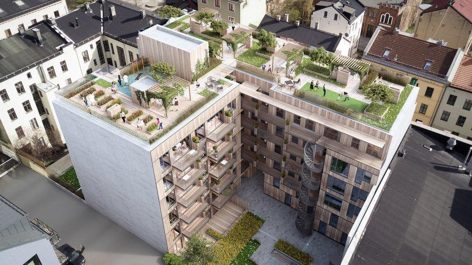 Bygger grønne leiligheter i massivtre