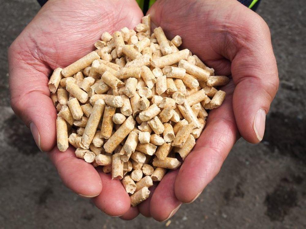 Moelven og SCA inngår pellets-samarbeid
