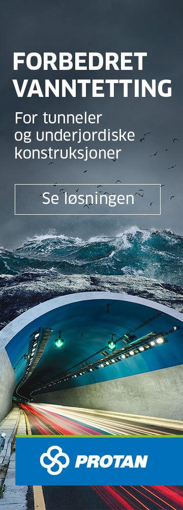 Protan - Sky Banner